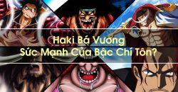 Vua Hải Tặc – Haki Bá Vương